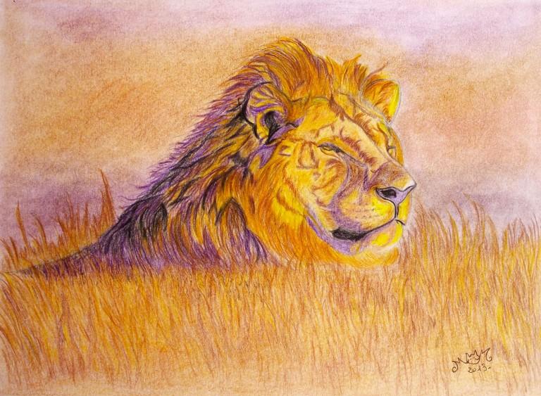 lion-2013_crayons de couleur