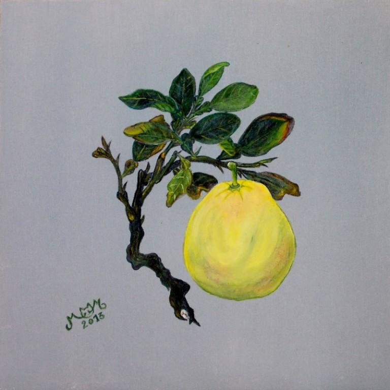 martinemoniemounie_peinture acrylique 18_fruits_2013
