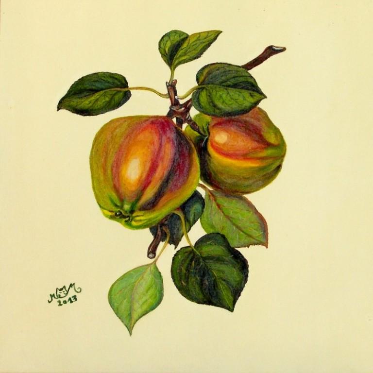martinemoniemounie_peinture acrylique 30_fruits_2013