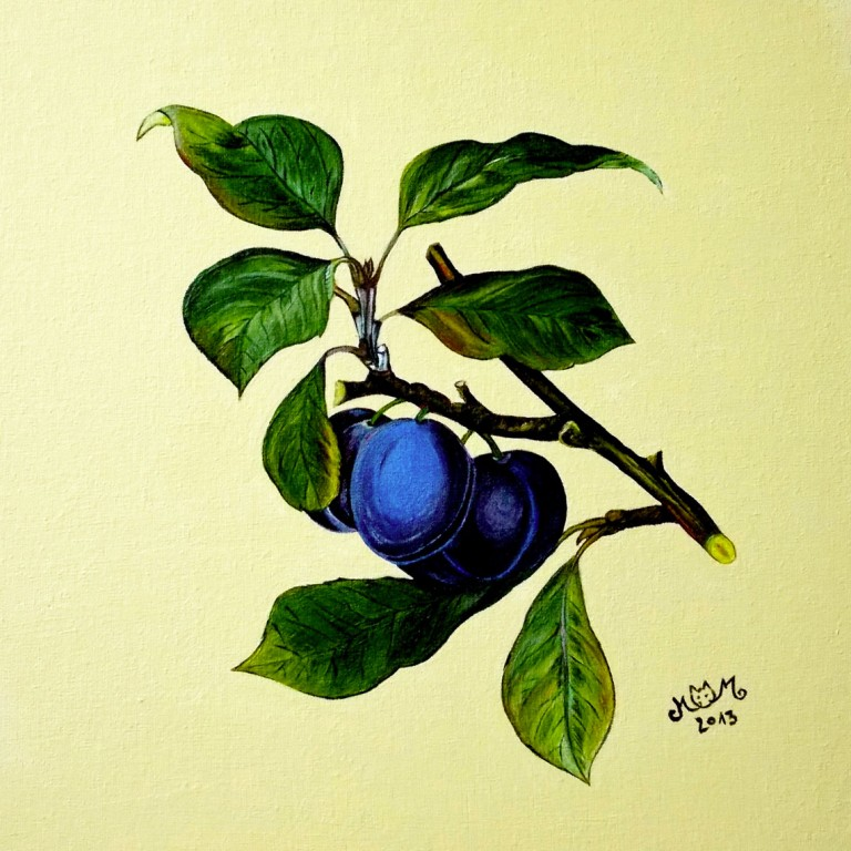martinemoniemounie_peinture-acrylique-32_fruits-prunes_2013