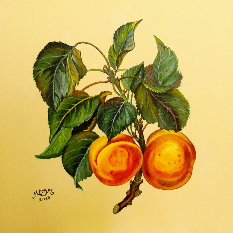 martinemoniemounie_peinture-acrylique-36_fruits-abricots_2015